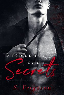 Cover Reveal: Between the Secrets by S Ferguson