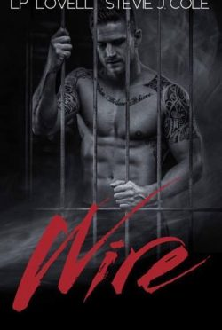 Cover Reveal: Wire (Wrong #3) by LP Lovell & Stevie J Cole