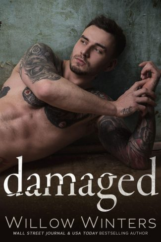 Cover Reveal: Damaged by Willow Winters
