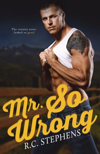 Cover Reveal: Mr So Wrong by RC Stephens