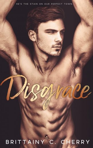Cover Reveal: Disgrace by Brittainy C Cherry