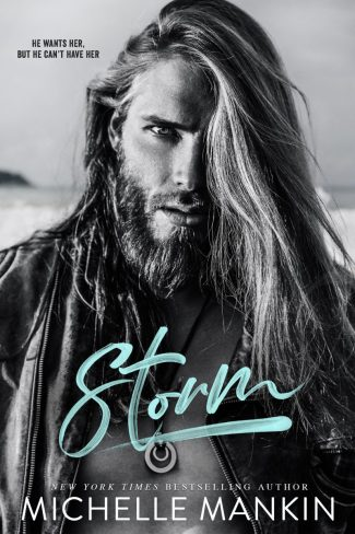 Cover Reveal: Storm by Michelle Mankin