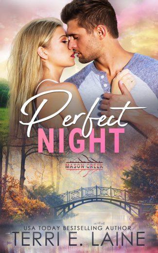 Release Day Blitz: Perfect Night (Mason Creek #4) by Terri E Laine