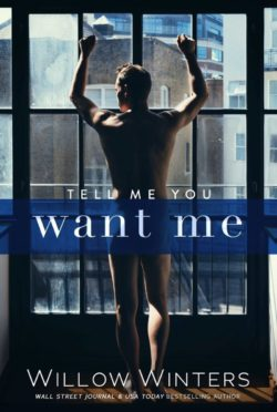 Release Day Blitz: Tell Me You Want Me by Willow Winters